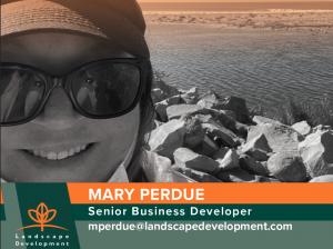 Mary Perdue, Senior Business Developer