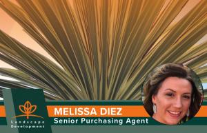 Melissa Diez, Senior Purchasing Agent